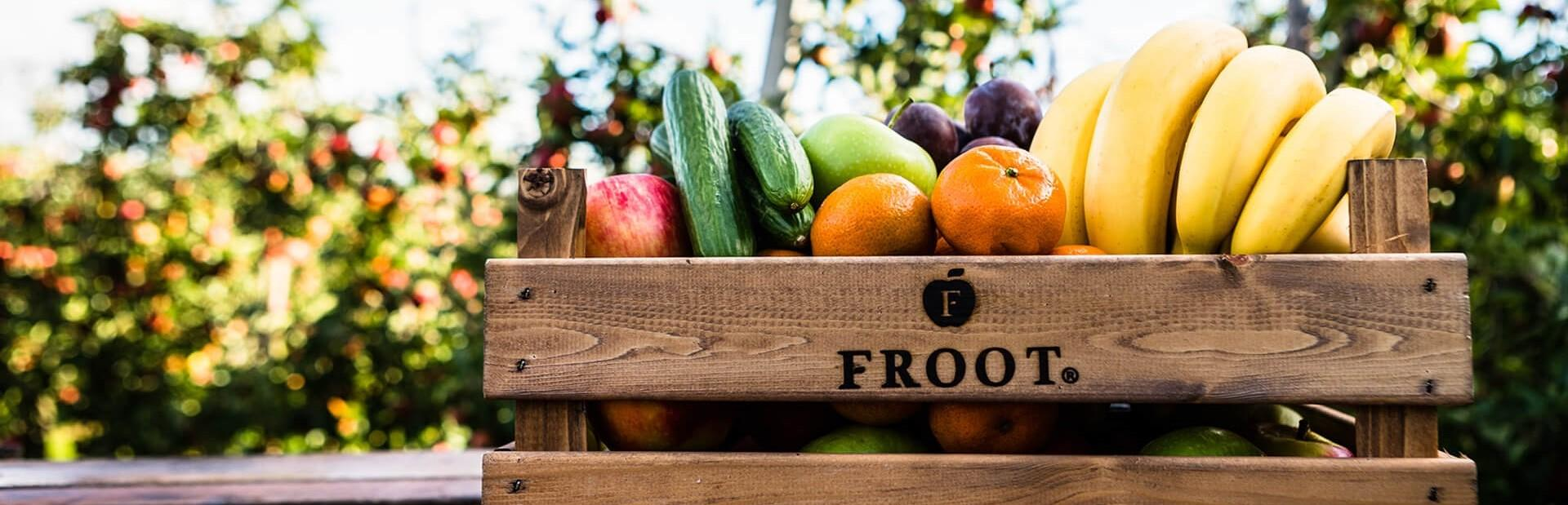 Froot-Fruitgaard